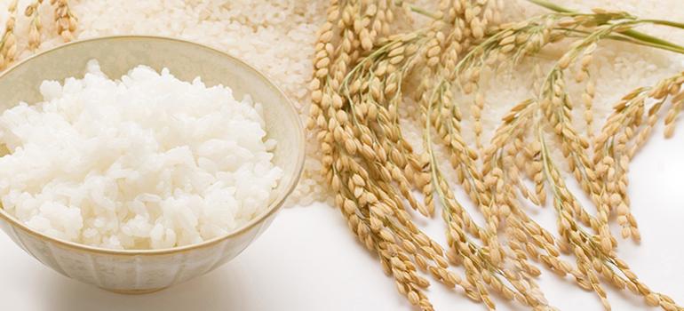 انواع غذا با برنج