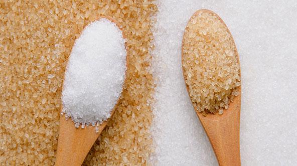 خواص شکر- معرفی انواع شکر